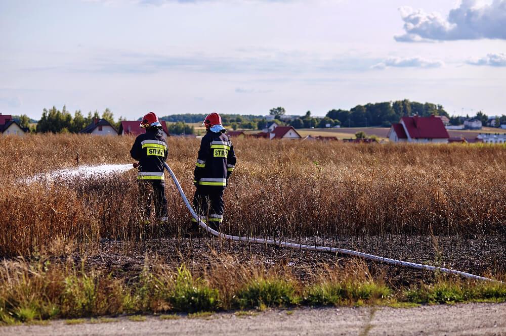 Požar u polju