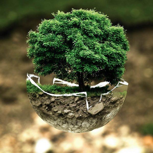 Čuvajmo naš okoliš
